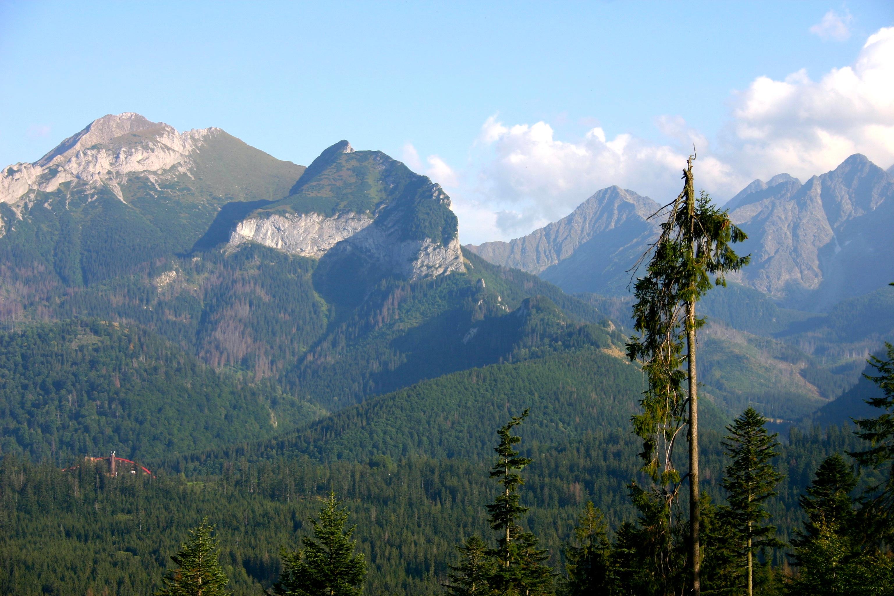 Pohľad na Belianske Tatry z Tatranskej Javoriny.