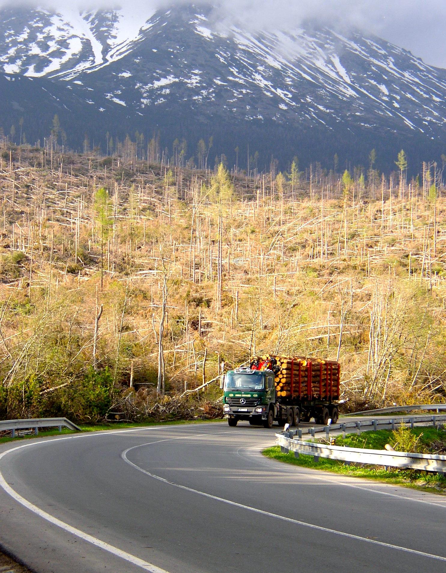 Územie Vysokých Tatier zasiahnuté veternou smršťou bolo dlhé 50 a široké 5 kilometrov. (Foto: Pavel Kapusta)